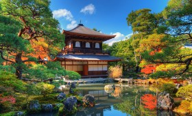 Les LOHAS en provenance du Japon