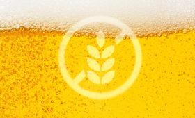 La bière sans gluten se fait mousser
